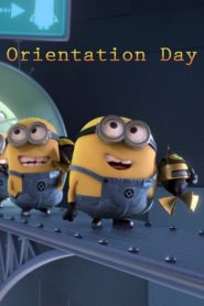 Minions: Día de orientación