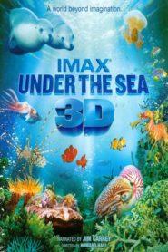 IMAX – Under the Sea 3D