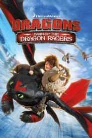 Cómo entrenar a tu dragón: El origen de las carreras de dragones