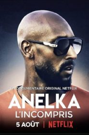 Anelka : El incomprendido