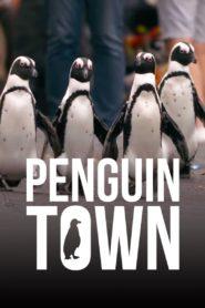 Colonia Pingüino